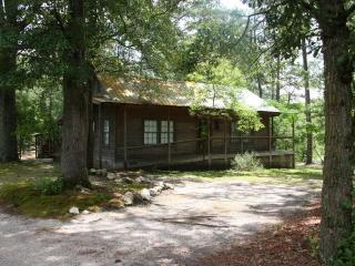 Nice Cabin with Deck and Washing Machine - Godwin vacation rentals
