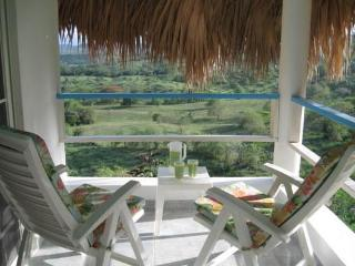 Sugar Shack. Tropical love nest/pool/beach/breezes - Luperón vacation rentals