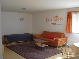 Sunny Condo with Balcony and DVD Player - Fieschertal vacation rentals
