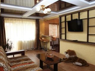 Luxury apartment. City centre. Wi-Fi. Jacuzzi - Ukraine vacation rentals