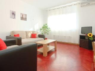 BELGRADE FLAT CITY CENTER APARTMENT - Belgrade vacation rentals