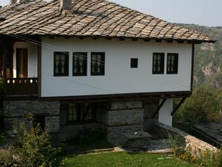 Cozy 3 bedroom Bed and Breakfast in Kovachevitsa - Kovachevitsa vacation rentals