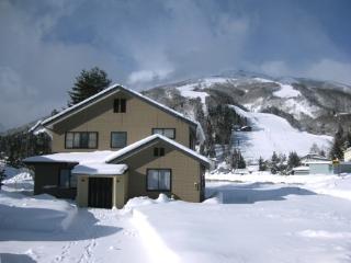 Hakuba Holiday House, Hakuba Happo One ski resort - Hakuba-mura vacation rentals