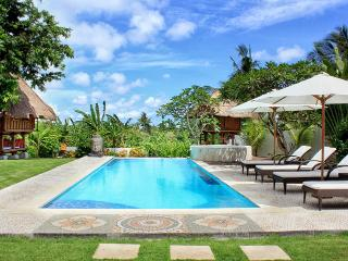 BEAUTIFUL VILLA  4 BEDROOMS iN CANGGU- STAF / SWIM - Canggu vacation rentals