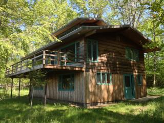 Lake Michigan Cabin - Private, Secluded Beachfront - Manistee vacation rentals