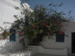 Dar Zina - B&B to belgo-tunisian couple - Midoun vacation rentals