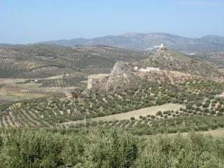 Cozy Province of Granada vacation Cottage with Internet Access - Province of Granada vacation rentals