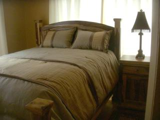 Condo Downtown Manitou Springs - Manitou Springs vacation rentals