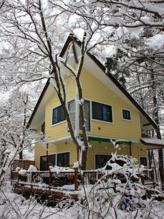 Hakuba Cottage Momiji - A stylish cosy cottage - Hakuba-mura vacation rentals