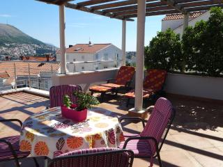 Villa Diana with Swimming Pool : Penthouse - Dubrovnik vacation rentals