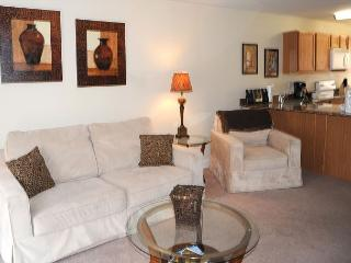 Nice 2 bedroom Apartment in Biloxi with Internet Access - Biloxi vacation rentals