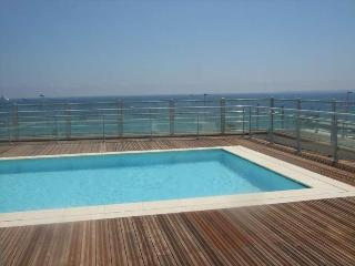 Lovely Antibes Apartment with Roof Top Pool and Sea Views - Antibes vacation rentals