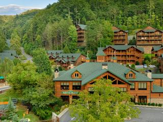 Beautiful 3 Bedroom Condo in the Smoky Mountains - Branson vacation rentals