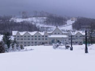 Wyndham Bentlry Brook - Wyndham Bentley Brook - Ski-in/ski-out - Hancock - rentals