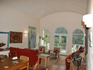 arched ceiling in great room - Grande Dame, river front in Monte Rio - Monte Rio - rentals