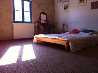 Villandry, au coeur des châteaux de la Loire, jolie maison donnant sur jardin et petite piscine privée - Chouze-sur-Loire vacation rentals
