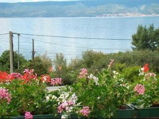8101 A3(3+2) - Duce - Duce Luka vacation rentals