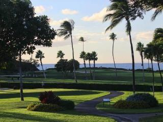 Maui Eldorado #H207 Ocean View - Lahaina vacation rentals