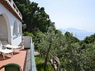 Villa Fiorente C - Massa Lubrense vacation rentals