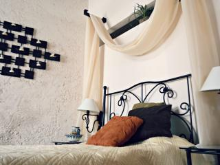 Beautiful Garden Home In Historical Campeche - Campeche vacation rentals