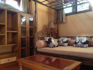 Murni's Houses, Ubud, Bali - Sawo Apt 2 - Ubud vacation rentals