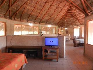 Nice 1 bedroom Condo in La Manzanilla - La Manzanilla vacation rentals