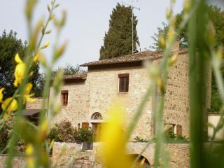 Podere La Grande Querce near s.gimignano - Montaione vacation rentals