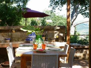 switable appartament in historic house near S.Gimignano - Gambassi Terme vacation rentals