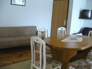 Apartments Vladimir - 21671-A2 - Image 1 - Prvic Luka - rentals