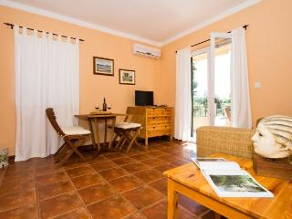 Apartments Sanja - 25031-A1 - Bibinje vacation rentals