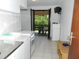 Apartments Mladen - 27991-A2 - Vinjerac vacation rentals