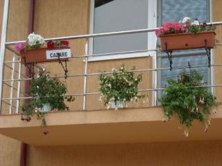 Vilele Brise de Mer - 2 Mai - ROMANIA - on Black Sea beach - Mamaia vacation rentals