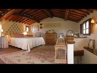 """Podere Le Murella """"La Dolce Vita"""" - Palaia vacation rentals"""