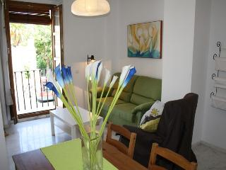 VALLEY GARDENS APARTMENT - Province of Seville vacation rentals