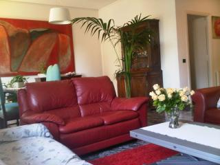 Elegant 3 km from S.Peter  residential area wi-fi parking  110mq - Rome vacation rentals