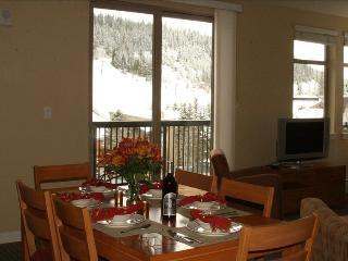 Fraser Crossing Premium Mountain View 2B/2B w/deck - Winter Park vacation rentals