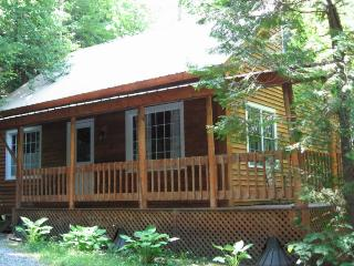 Nice 2 bedroom Cabin in Barnet - Barnet vacation rentals