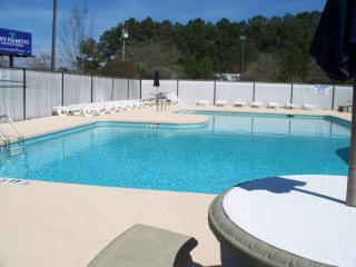 Comfortable Condo Near Beach/Golf, Surfside Beach! - Surfside Beach vacation rentals