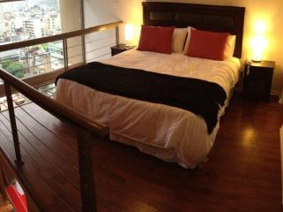 Loft in Santiago's Best Location - Pomaire vacation rentals
