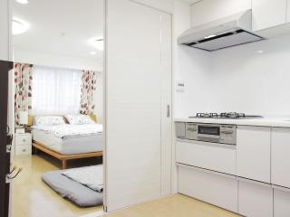 SPECIAL BIG Apt in Harajuku Shibuya - Shibuya vacation rentals