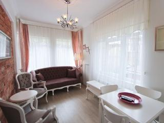 Charming Flats back to The British Consulate - Istanbul vacation rentals