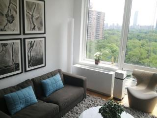 Central Park-Facing Luxury One Bedroom! - New York City vacation rentals