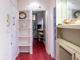 Typical Bright 1 Bedroom Parisian Apartment - Paris vacation rentals