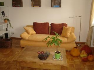 LLAG Luxury Vacation Apartment in Saarbrücken - natural, beautiful, comfortable (# 3971) - Mandelbachtal vacation rentals