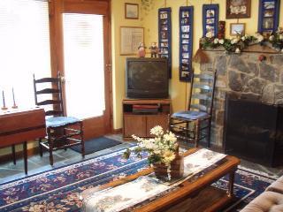 Lakefront All Season Rental - Ludlow vacation rentals