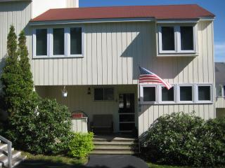 Charming 3 bedroom Roxbury House with Deck - Roxbury vacation rentals