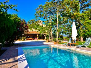 Comfortable 4 bedroom Bibbona Villa with Deck - Bibbona vacation rentals
