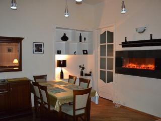 Spacious 4 Bedroom + Living in center - Kiev vacation rentals