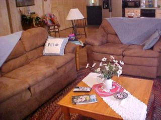 Private Cabin Close To Dupont, Hiking and Biking - Brevard vacation rentals