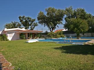 Nice 2 bedroom House in Vendas Novas - Vendas Novas vacation rentals